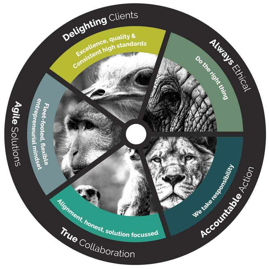 The JvR Way: Delighting Clients, Always Ethical, Accountable Action, True Collaboration, Agile Solutions